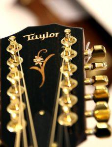 12 saitige Westerngitarre